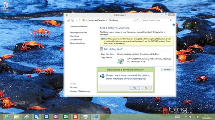 Encourage other people in your homegroup to use the same File History backup drive