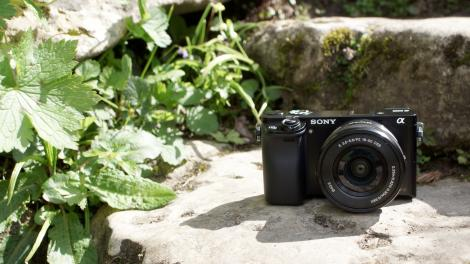 Review: Updated: Sony Alpha A6000