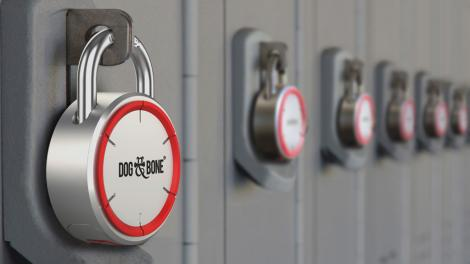 Review: Dog & Bone LockSmart