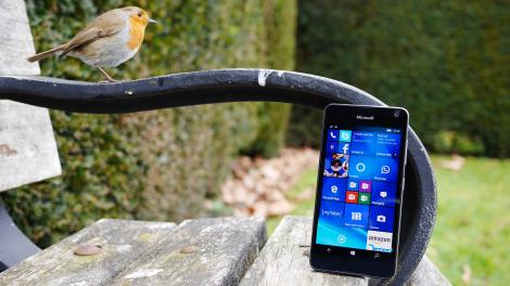 Review: Microsoft Lumia 650